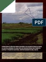 Construcción de Indicadores de Ecoeficiencia Para La Altillanura Plana en Los Municipios de Puerto López y Puerto Gaitán Departamento Del Meta