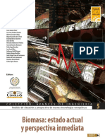ICAI_Biomasa. Estado Actual y Perspectiva Inmediata.pdf