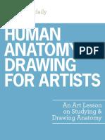 human-anatomy-drawing-for-artists.pdf