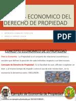 Analisis Economico Del Derecho de Propiedad