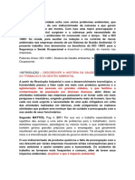 Artigo a Importância Da ISO 14001 Para a SST