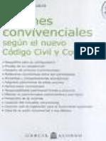 Uniones Convivenciales en El Nuevo Codigo. Claudio Belluscio. Con Seleccion de Texto