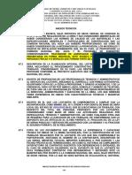 3 ANEXOS TECNICOS.docx