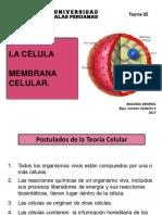 Bio Gen  Teoria 5 2015  Celula y Membrana.pdf