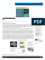 Phatopsikofisiologi Depresi 3 2013 WF