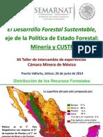 El Desarrollo Forestal Sustentable,