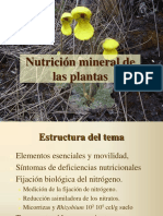 CLASE4_Nutricion_mineral2017