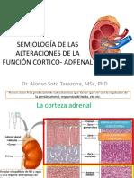 Alteraciones Adrenal 2016l