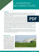 biogas.pdf