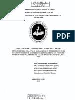 Modelo de Programa de Inrtervencion