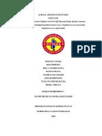 Jurnal Sistem Integumen Cover