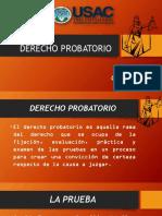 Derecho Probatorio 2017