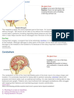 000 Brains Made Simple
