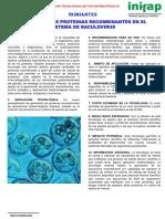 Generación de Proteinas Recombinantes en El Sistema de Baculovirus