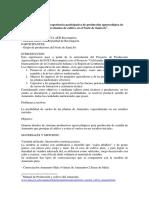 05 - Pietronave.pdf