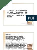 flexibilidadcurricular-101019163621-phpapp01
