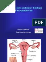 Anatomia y Fisiologia de La Reproduccion