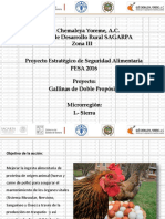 Proyecto Aves