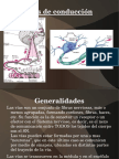 vasascendentesydescendentes-130309191233-phpapp01.odp