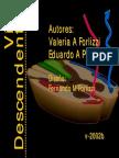 vias-descendentes.pdf