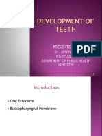 1. Development of Teeth