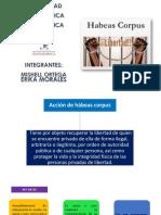 Derecho Constitucional - Habeas Corpus