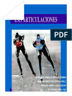 Articulaciones.pdf