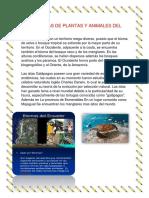 Ecosistemas de Plantas y Animales Del Ecuador