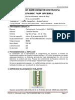 IVR-20-16 _ Inspección Por Videoscopía a Motor _TRACTO MERCEDES BENZ R-5...