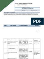 AVANCE PROGRAMÁTICO 2016-3 PSICODINAMICA DE LA PERSONALIDAD II ESCOLARIZADO.doc