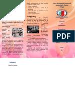 Brochure La Contingencia