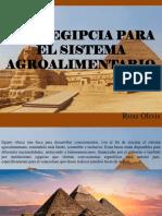 Rosa Olivis - Beca Egipcia Para El Sistema Agroalimentario