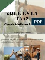 Atahualpa Fernández Arbulu - ¿Qué Es La TAA?
