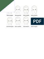 Formas de La Cara