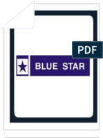 Final Blue Star