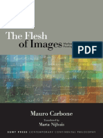 The Flesh of Images_  Mauro Carbone