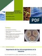 Microorganismos de Interes Idustrial