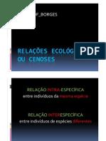 Ecologia - Relações