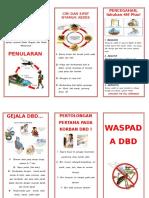 242516021-Leaflet-Dbd-B2