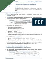 Tema 5 - Procesos Cognitivos Complejos