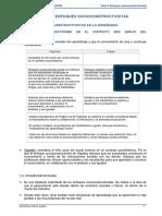 Tema 6 - Enfoques Socioconstructivistas