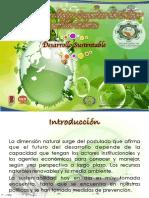 Desarrollo Sustentable Unidad1 1.3.3