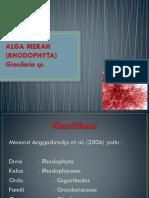 ALGA MERAH (RHODOPHYTA).pptx