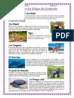 Animales en Peligro de Extinción 1 Hoja