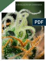 Terpenos Cannabis