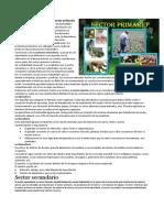 Actividades Económicas Del Sector Primario, Secundario y Terciario