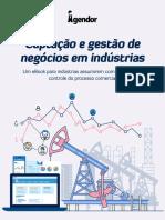 eBook Captacao Gestao Negocios Industrias