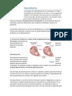 Problemas Placentaria