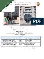 INFORME I -  Columna Esbelta 2017 II