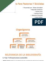 BICI Plan de Desarrollo